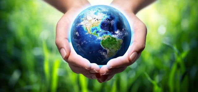 Giornata Mondiale dell'Ambiente: Progetti interdisciplinari classi biennio
